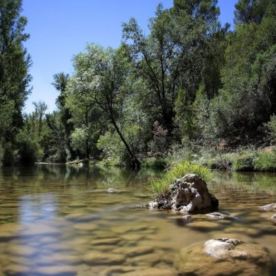 parque-natural-de-las-sierras-de-cazorla-segura-y-las-villas_7632215